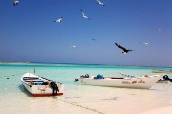 isla-la-tortuga0270E3C857-C5DE-5B8B-C056-0564A9698C96.jpg