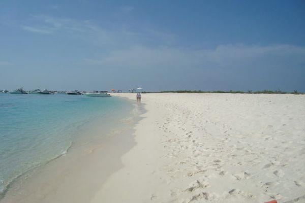 isla-la-tortuga065E0C5BEA-5F5C-1002-5507-C3E8C9C12093.jpg
